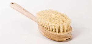 Trockenbürste - Entgiftung von außen